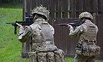 British Assault Rifles MOD 45162604.jpg