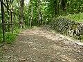 Brno, Wilsonův les (1).JPG