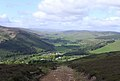 Broadmeadows and Yarrow Valley - geograph.org.uk - 439007.jpg