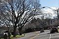 BrooklineMA WestRoxburyParkwayRotary.jpg