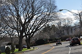 Der West Roxbury Parkway in Brookline