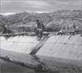 BrooksRiverWeir1958.png