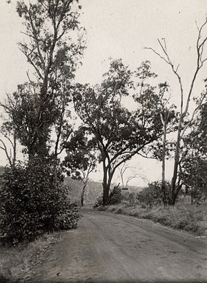 Brookton Highway - Brookton Highway, Roleystone Valley, 1927