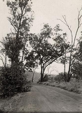 Brookton Highway - Brookton Highway, Roleystone Valley, 1927