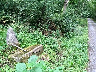 Brunnen Bärlochklinge Schönbuch.jpg