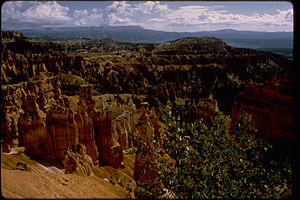 Bryce Canyon National Park BRCA0660.jpg