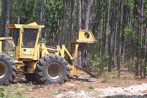 Feller buncher - Modern style Tigercat Feller Buncher. Commonly referred to as a tree cutter