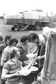 Bundesarchiv Bild 183-T0817-0019, FDJ Studenten als Erntehelfer, Pause