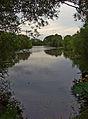Burshill fishing lake.jpg