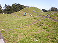 CA Academy of Sciences Living Roof 1.JPG