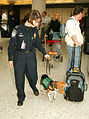 CBP Airport.jpg
