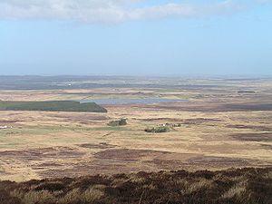 Caithness landscape, looking towards Halkirk f...