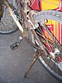 Calf skin bicycle 3.jpg