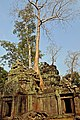 Cambodia-2540 (3608481076).jpg
