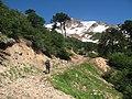 Camino a paso Las Bayas, Reserva Nacional Ralco.jpg
