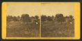 Camp of Gen'l M'Dowell's body guard, July 5, 1862, by O'Sullivan, Timothy H., 1840-1882.png