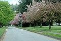 Canada Education Park - Landscaping (7152350025).jpg
