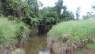 Ngatjan - Canal Creek, flowing through Ngatjan to Waugh Pocket, 2018