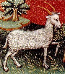 Capricorno rappresentato in un libro di astrologia del XV secolo