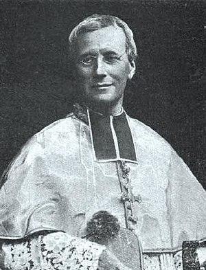 Pierre Andrieu - Photo of Cardinal Andrieu, Archbishop of Bordeaux (1849-1935)