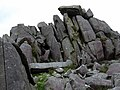 Carn Menyn bluestones - geograph.org.uk - 1451509.jpg
