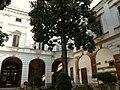 Casale Monferrato-palazzo Gaspardone4.jpg