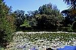 Caserta Lago 06.jpg