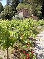 Castello di Amorosa Winery, Napa Valley, California, USA (8001592927).jpg
