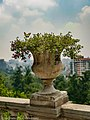 Castillo de Chapultepec, Flowers pot in the balcony's fence.jpg