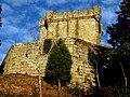 Castillo de Villasobroso - panoramio.jpg