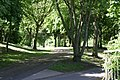 Castle Grounds Pathway (1) - geograph.org.uk - 1400343.jpg