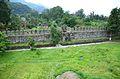 Castle of Gonio.3.jpg