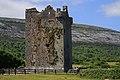 Castles of Munster, Gleninagh, Clare (3) - geograph.org.uk - 1952595.jpg