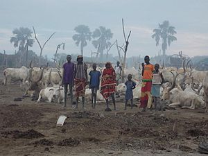 A cattle camp in Rumbek
