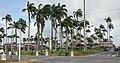 Cayenne Place des palmistes.jpg