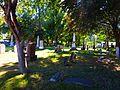 Cemetery, St. Johns Church, Historic Sandwich Towne, Windsor, Ontario (21746768246).jpg