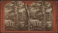 Cemp (i.e. camp) life, Lake George, by Conkey, G. W. (George W.), 1837-ca. 1900.png