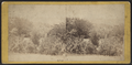 Central Park, from Robert N. Dennis collection of stereoscopic views 6.png
