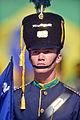 Cerimônia de comemoração dos 71 anos da Tomada de Monte Castelo (24483049614).jpg