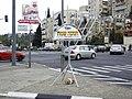 Chabad Chanukkiah (3124190449).jpg