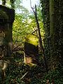 Chenstochov ------- Jewish Cemetery of Czestochowa ------- 45.JPG