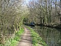 Chesterfield Canal - Narrowboat rounds the bend - geograph.org.uk - 747114.jpg
