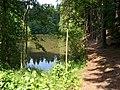 Choceň, rybník pod Hlavačovem (01).jpg