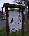 Chomoutov, NS Kol-kolem Olomouce, 11 - Chomoutovské jezero.jpg