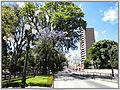 Cidade de Curitiba - Brazil by Augusto Janiski Junior - Flickr - AUGUSTO JANISKI JUNIOR (28).jpg