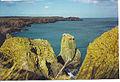 Cliffs North of Slains Castle. - geograph.org.uk - 116808.jpg