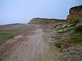 Cliffs near Galley Hill - geograph.org.uk - 526526.jpg