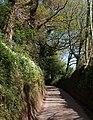 Climbing to Five Lanes - geograph.org.uk - 1272431.jpg