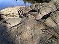 Close-up of the granite at The Rocks (7).jpg