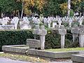Cmentarz Wojskowy na Powązkach (171).JPG